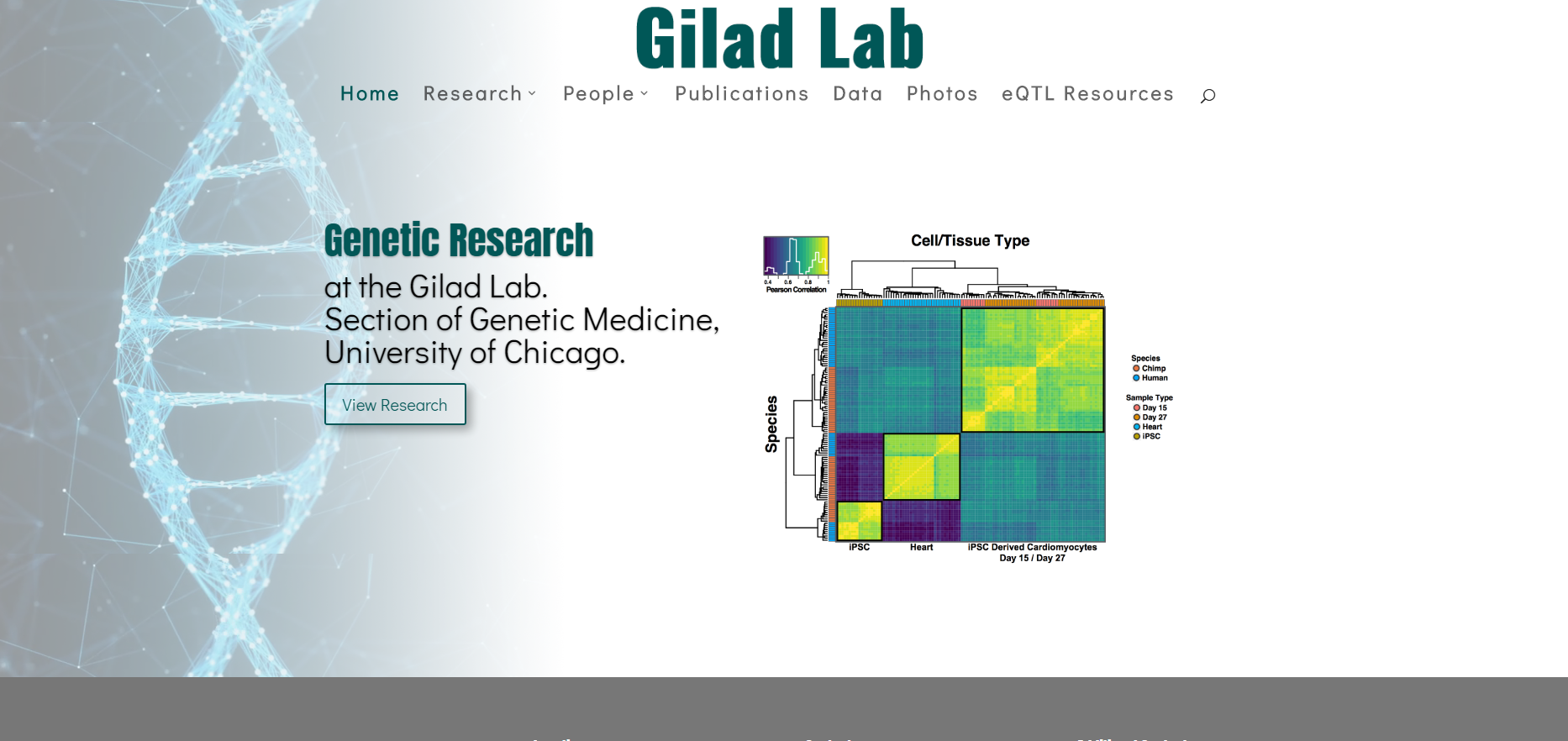 Gilad Lab